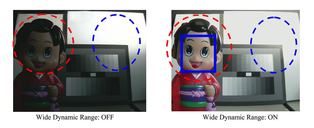System WDR (Wide Dynamic Range) w IP kamerze HD-2036TV