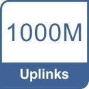 UpLinks 1000Mbps.