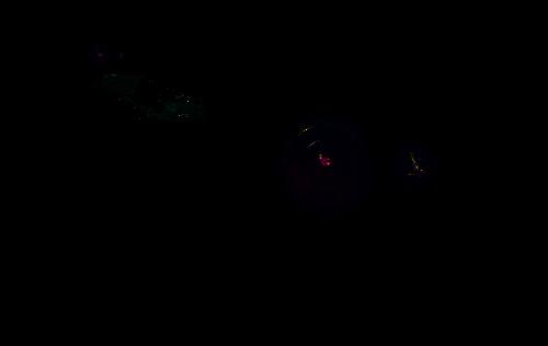 Kamera z oświetlaczem IR LED Black Glass.