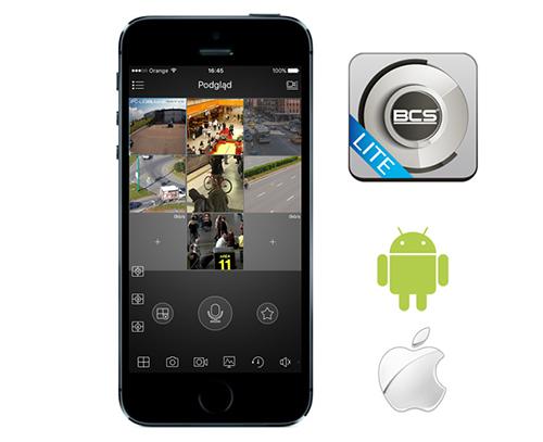 Wygląd interfejsu graficznego aplikacji BCS Viewer Lite.