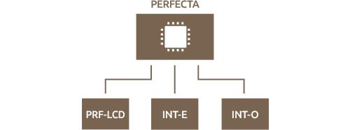 PERFECTA 16-WRL - Budowa systemu.