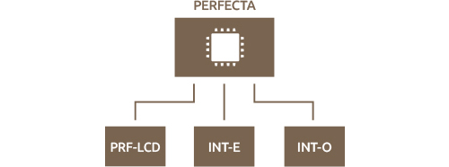 PERFECTA-T 32-WRL - Budowa systemu.